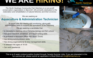 Ad for summer student with interest in fish and experience with administrative tasks and report writing