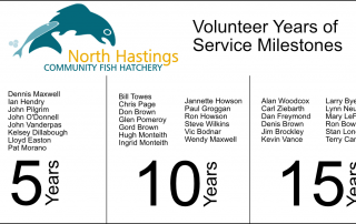 List of names of people who have spent 5, 10 or 15 years volunteering for the Hatchery